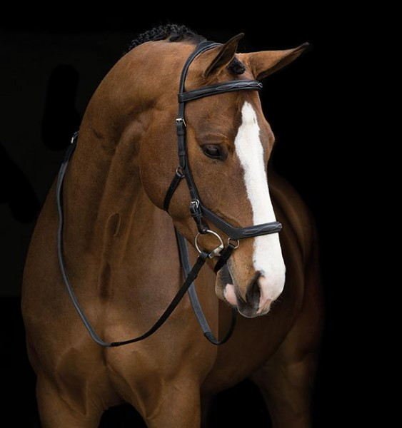 Horseware Rambo Micklem Competition Deluxe Gr. Cob